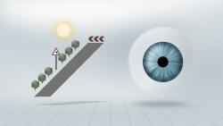 Am-Tag-ist-die-Pupille-und-die-tiefenschaerfe-hoch